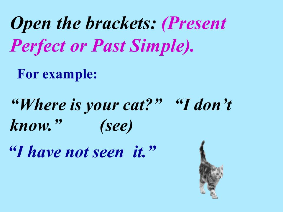 "Open the brackets: (Present Perfect or Past Simple). ""Where is your cat?"" ""I don't know."" (see) ""I have not seen it."" For example:"