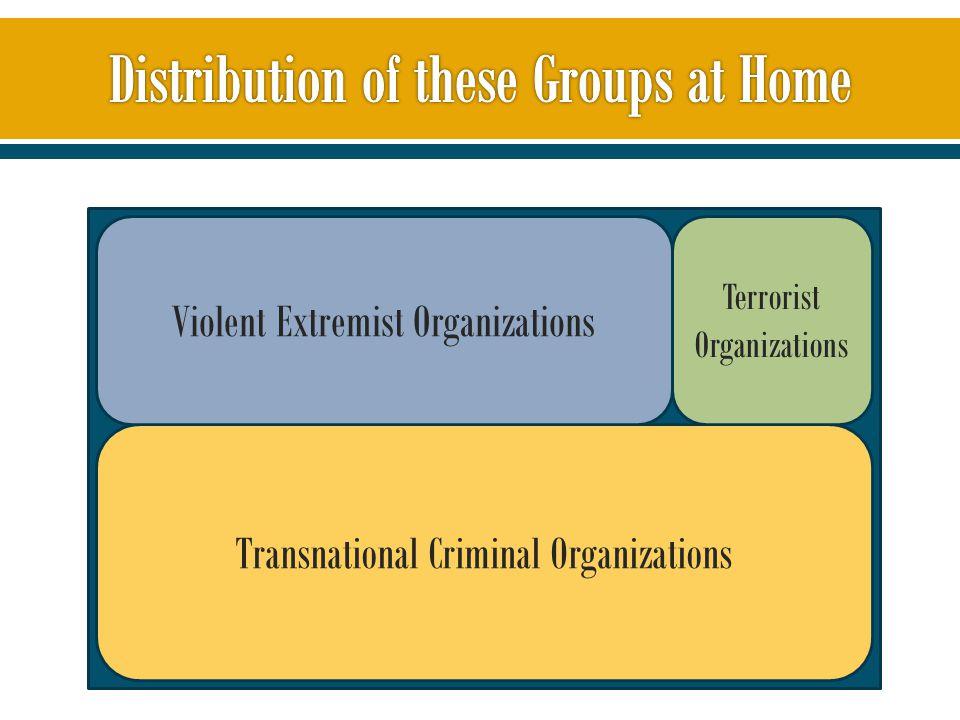 Transnational Criminal Organizations Violent Extremist Organizations Terrorist Organizations