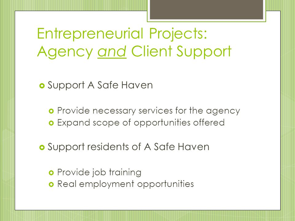 Entrepreneurial Projects: Agency and Client Support  Support A Safe Haven  Provide necessary services for the agency  Expand scope of opportunities
