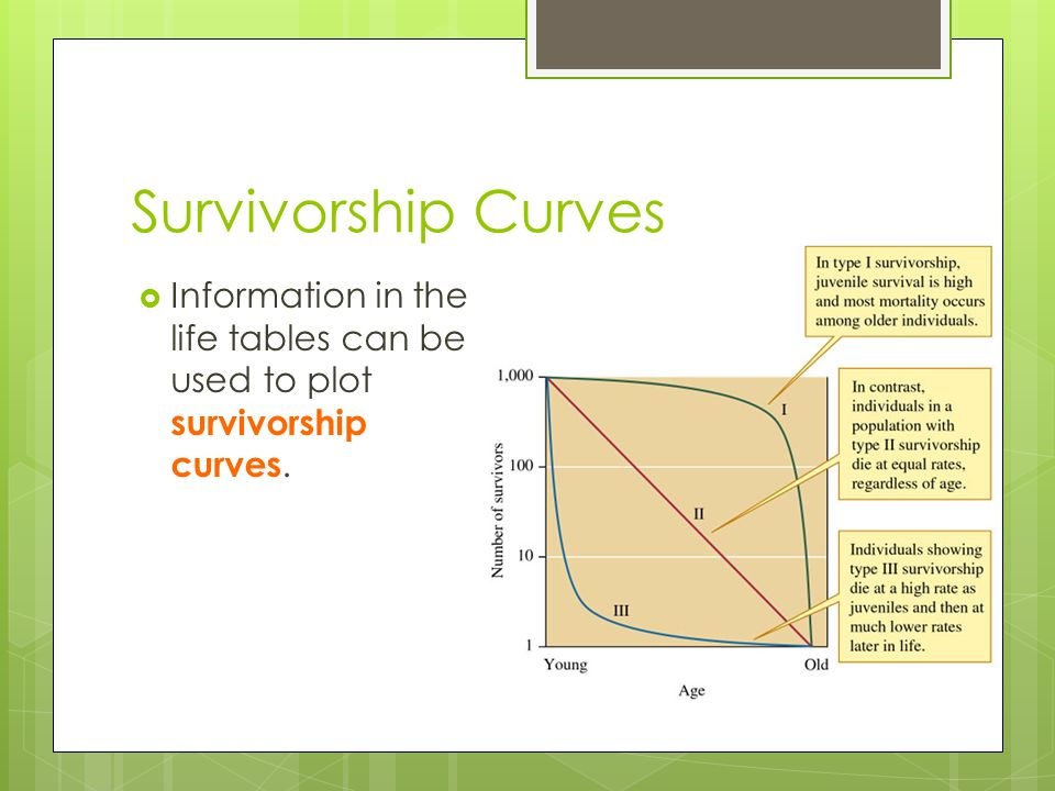 Survivorship Curves  Information in the life tables can be used to plot survivorship curves.