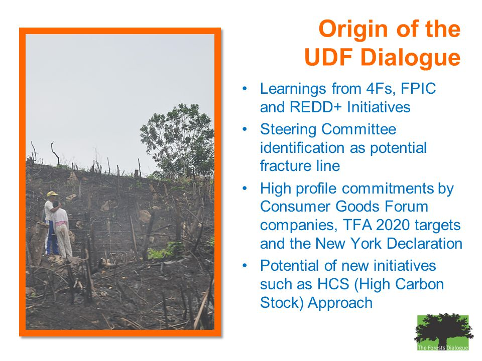Origin of the UDF Dialogue Learnings from 4Fs, FPIC and REDD+ Initiatives Steering Committee identification as potential fracture line High profile commitments by Consumer Goods Forum companies, TFA 2020 targets and the New York Declaration Potential of new initiatives such as HCS (High Carbon Stock) Approach