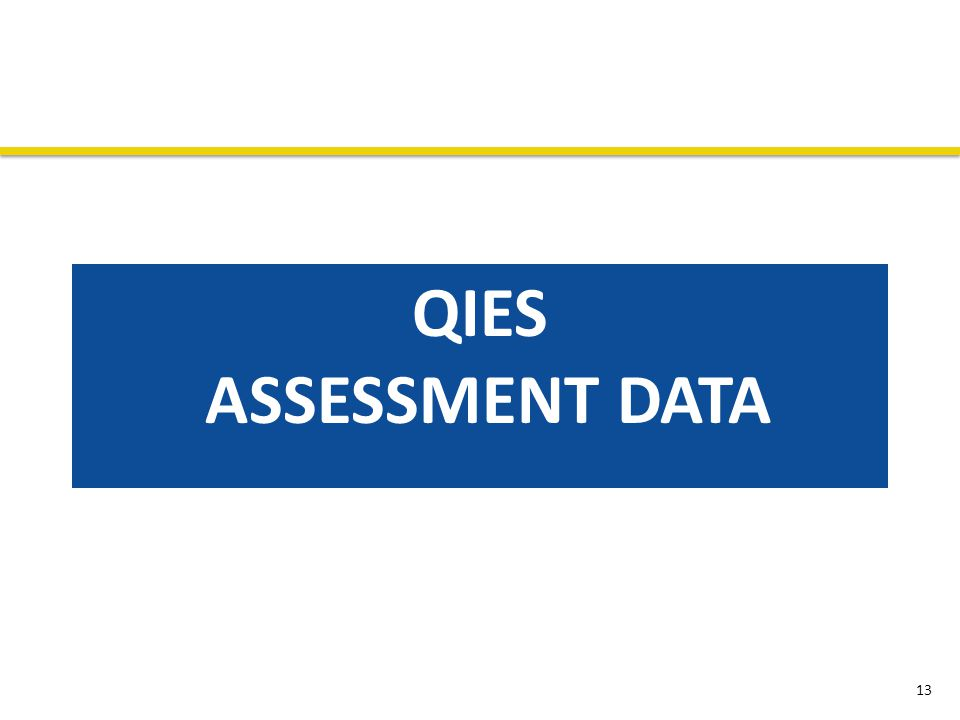 QIES ASSESSMENT DATA 13