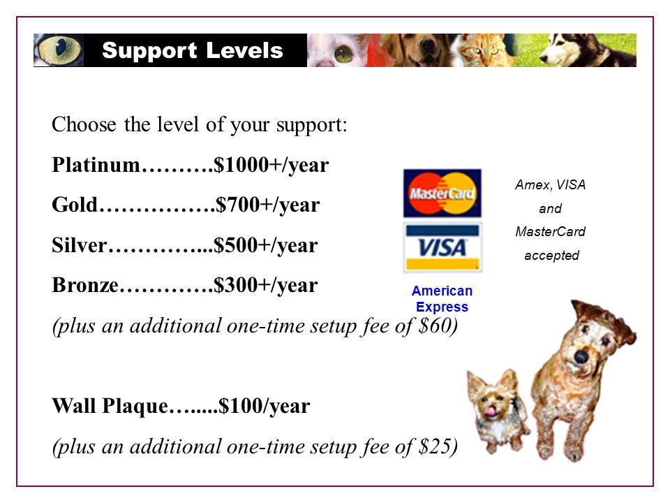 Support Levels Choose the level of your support: Platinum……….$1000+/year Gold…………….$700+/year Silver…………...$500+/year Bronze………….$300+/year (plus an additional one-time setup fee of $60) Wall Plaque….....$100/year (plus an additional one-time setup fee of $25) Amex, VISA and MasterCard accepted American Express