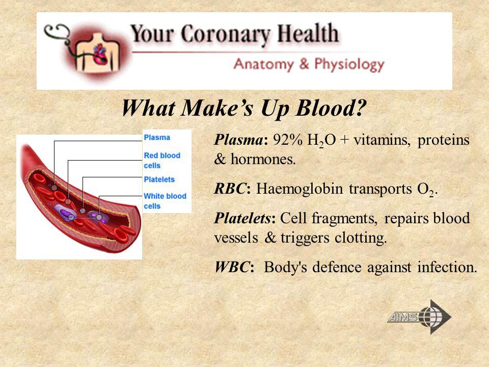 Plasma: 92% H 2 O + vitamins, proteins & hormones. RBC: Haemoglobin transports O 2. Platelets: Cell fragments, repairs blood vessels & triggers clotti