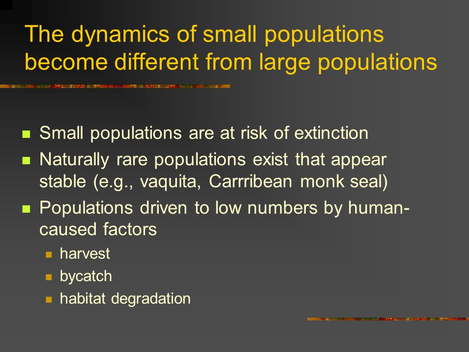 The dynamics of small populations become different from large populations Small populations are at risk of extinction Naturally rare populations exist that appear stable (e.g., vaquita, Carrribean monk seal) Populations driven to low numbers by human- caused factors harvest bycatch habitat degradation