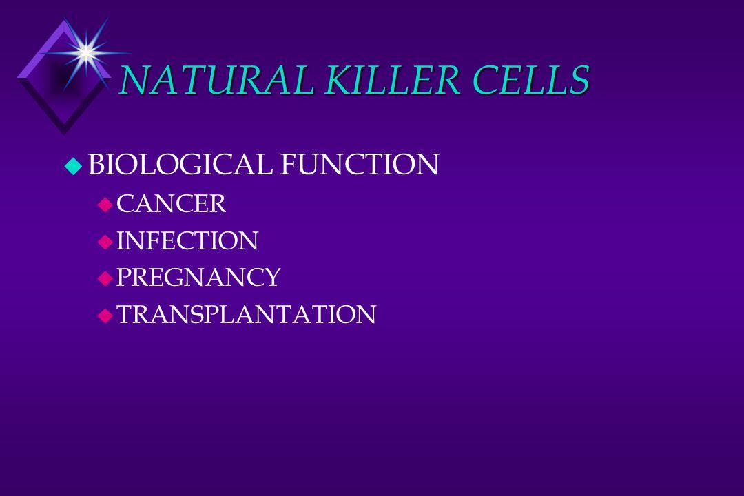 NATURAL KILLER CELLS u BIOLOGICAL FUNCTION u CANCER u INFECTION u PREGNANCY u TRANSPLANTATION