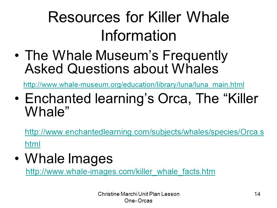 Christine Marchi Unit Plan Lesson One- Orcas 14 Resources for Killer Whale Information The Whale Museum's Frequently Asked Questions about Whales http