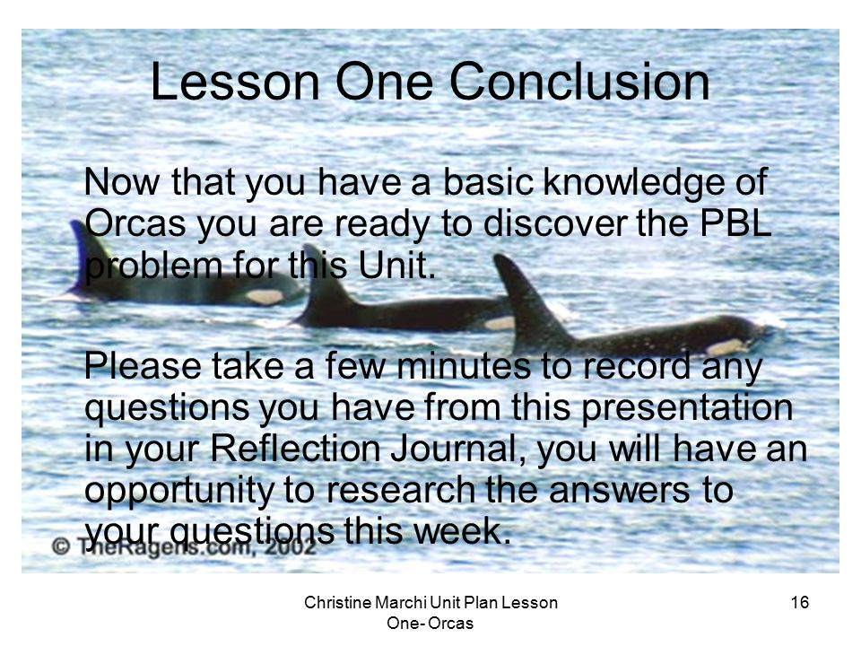 Christine Marchi Unit Plan Lesson One- Orcas 16 Lesson One Conclusion Now that you have a basic knowledge of Orcas you are ready to discover the PBL p