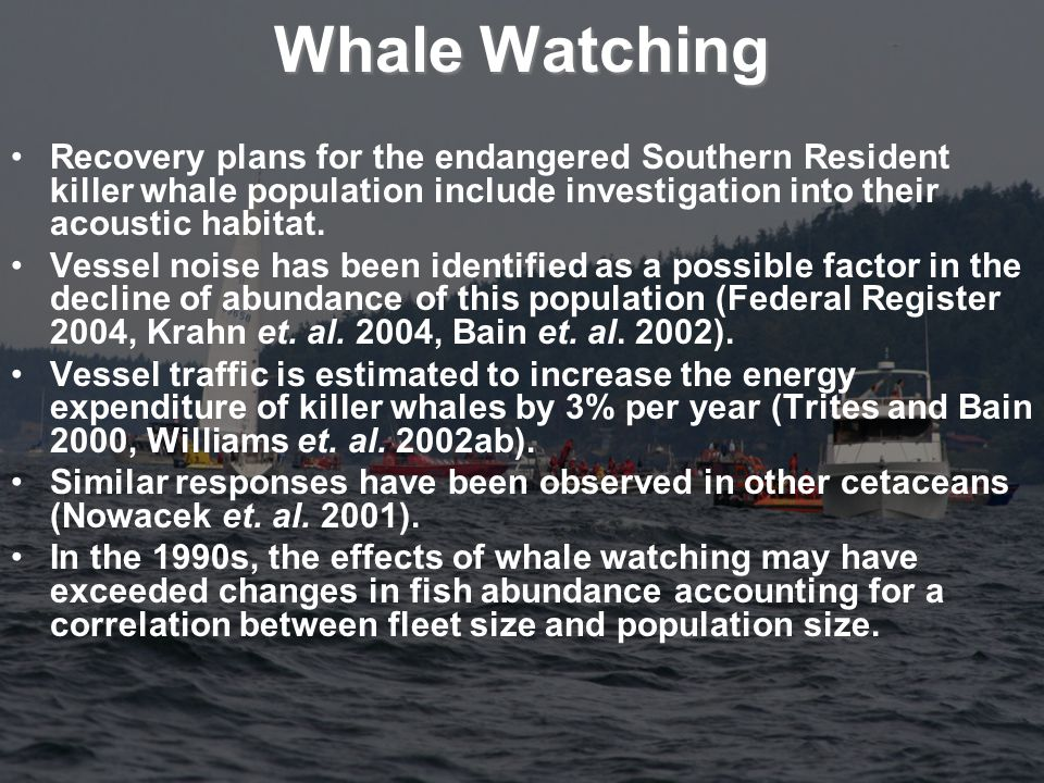 Whale Watching Recovery plans for the endangered Southern Resident killer whale population include investigation into their acoustic habitat.