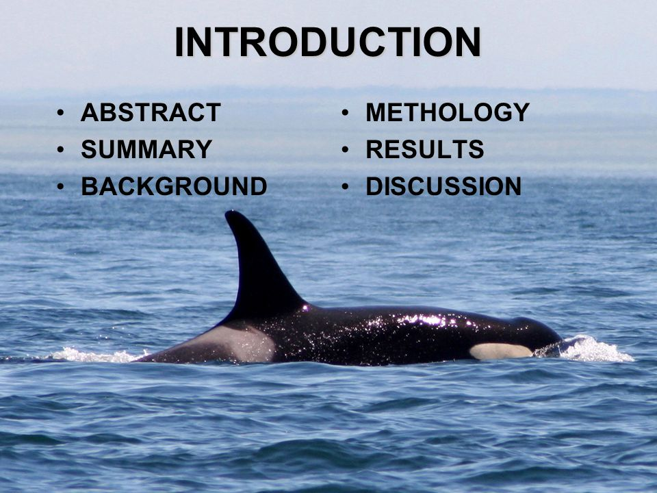 INTRODUCTION ABSTRACT SUMMARY BACKGROUND METHOLOGY RESULTS DISCUSSION