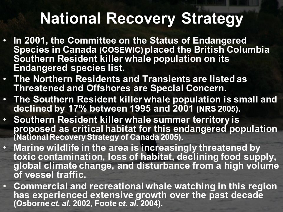 National Recovery Strategy In 2001, the Committee on the Status of Endangered Species in Canada (COSEWIC) placed the British Columbia Southern Resident killer whale population on its Endangered species list.