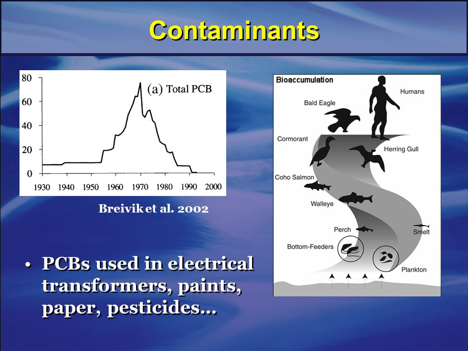 Contaminants PCBs used in electrical transformers, paints, paper, pesticides… Breivik et al. 2002