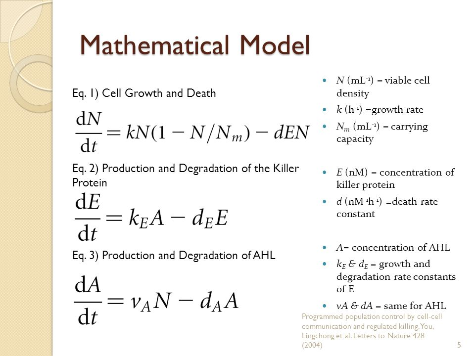 Mathematical Model N (mL -1 ) = viable cell density k (h -1 ) =growth rate N m (mL -1 ) = carrying capacity E (nM) = concentration of killer protein d (nM -1 h -1 ) =death rate constant A= concentration of AHL k E & d E = growth and degradation rate constants of E vA & dA = same for AHL Programmed population control by cell-cell communication and regulated killing.