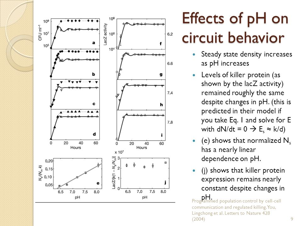 Effects of pH on circuit behavior Steady state density increases as pH increases Levels of killer protein (as shown by the lacZ activity) remained roughly the same despite changes in pH.