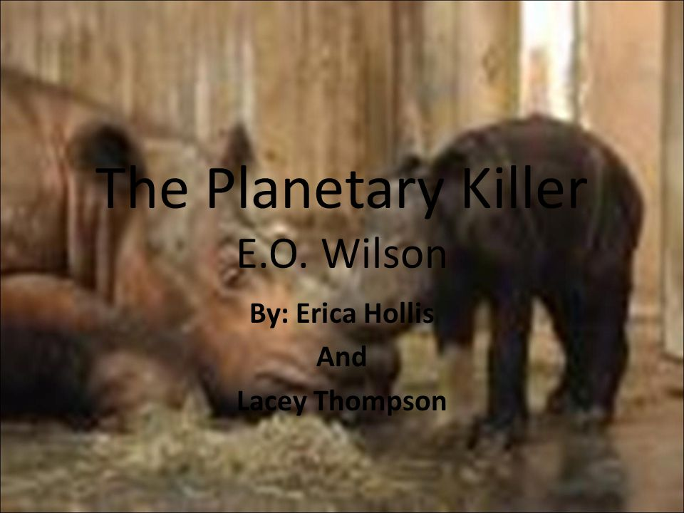 The Planetary Killer E.O. Wilson By: Erica Hollis And Lacey Thompson