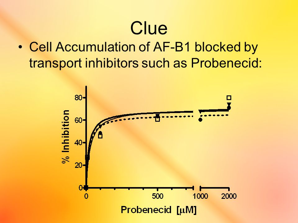 Clue Cell Accumulation of AF-B1 blocked by transport inhibitors such as Probenecid: