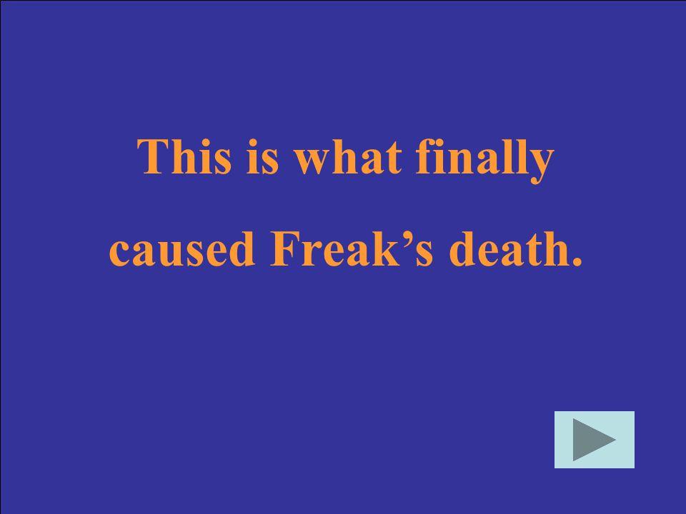 Who is Freak?