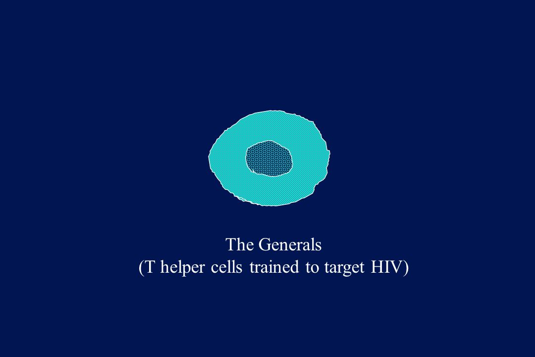 The Generals (T helper cells trained to target HIV)