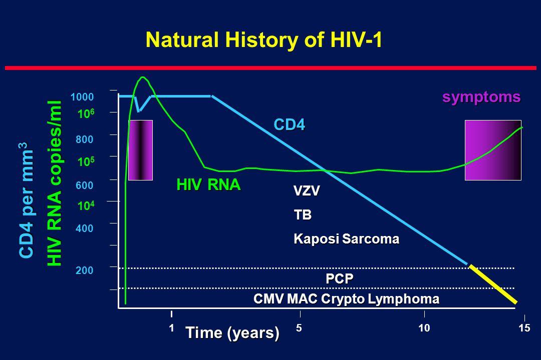 1000 800 600 400 200 1510 Time (years) CD4 per mm 3 Natural History of HIV-1 VZVTB Kaposi Sarcoma PCP 15 CMV MAC Crypto Lymphoma symptoms CD4 HIV RNA