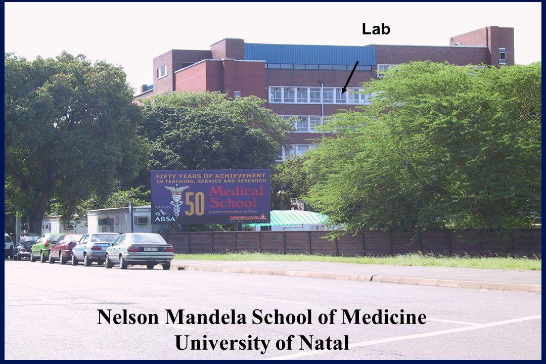 Nelson Mandela School of Medicine University of Natal Lab