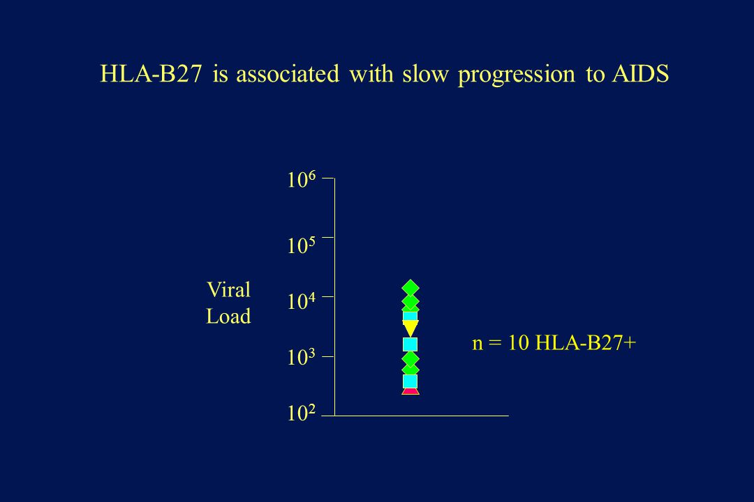 10 2 10 3 10 4 10 5 10 6 HLA-B27 is associated with slow progression to AIDS Viral Load n = 10 HLA-B27+