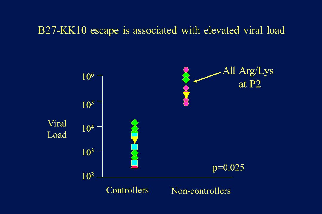 B27-KK10 escape is associated with elevated viral load Non-controllers p=0.025 All Arg/Lys at P2 10 2 10 3 10 4 10 5 10 6 Controllers Viral Load