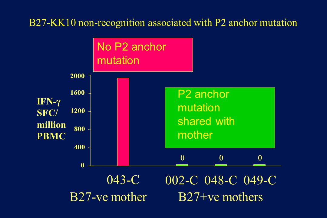 2000 1600 1200 800 400 0 B27-ve motherB27+ve mothers 043-C 000 002-C048-C049-C B27-KK10 non-recognition associated with P2 anchor mutation IFN-  SFC/ million PBMC P2 anchor mutation shared with mother No P2 anchor mutation