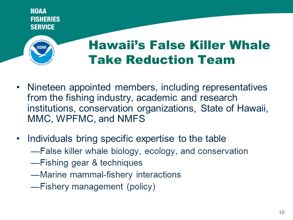 10 Hawaii's False Killer Whale Take Reduction Team Nineteen appointed members, including representatives from the fishing industry, academic and research institutions, conservation organizations, State of Hawaii, MMC, WPFMC, and NMFS Individuals bring specific expertise to the table —False killer whale biology, ecology, and conservation —Fishing gear & techniques —Marine mammal-fishery interactions —Fishery management (policy)