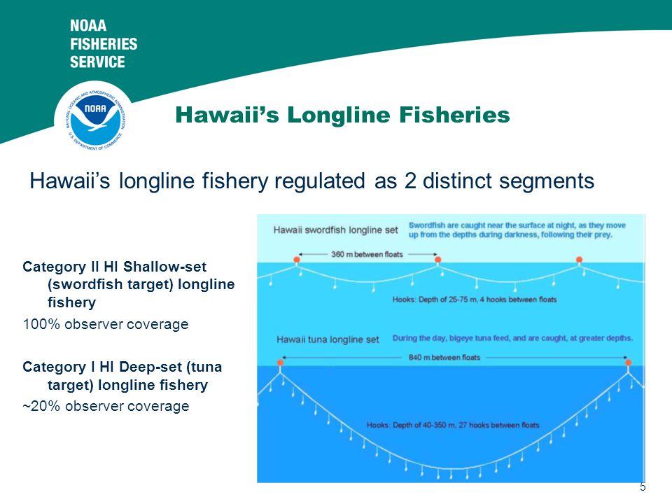 5 Hawaii's Longline Fisheries Category II HI Shallow-set (swordfish target) longline fishery 100% observer coverage Category I HI Deep-set (tuna target) longline fishery ~20% observer coverage Hawaii's longline fishery regulated as 2 distinct segments
