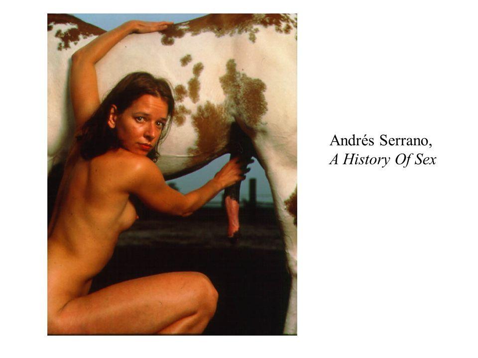 Andrés Serrano, A History Of Sex