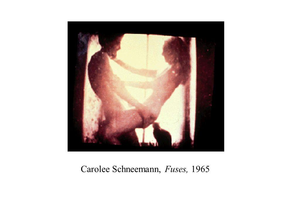 Carolee Schneemann, Fuses, 1965