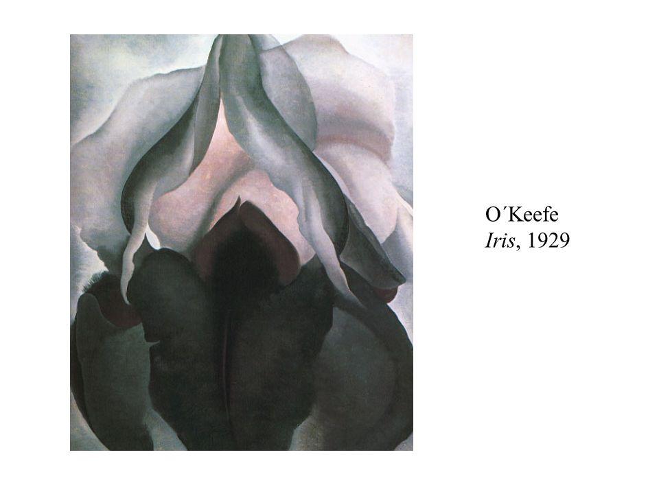 O´Keefe Iris, 1929