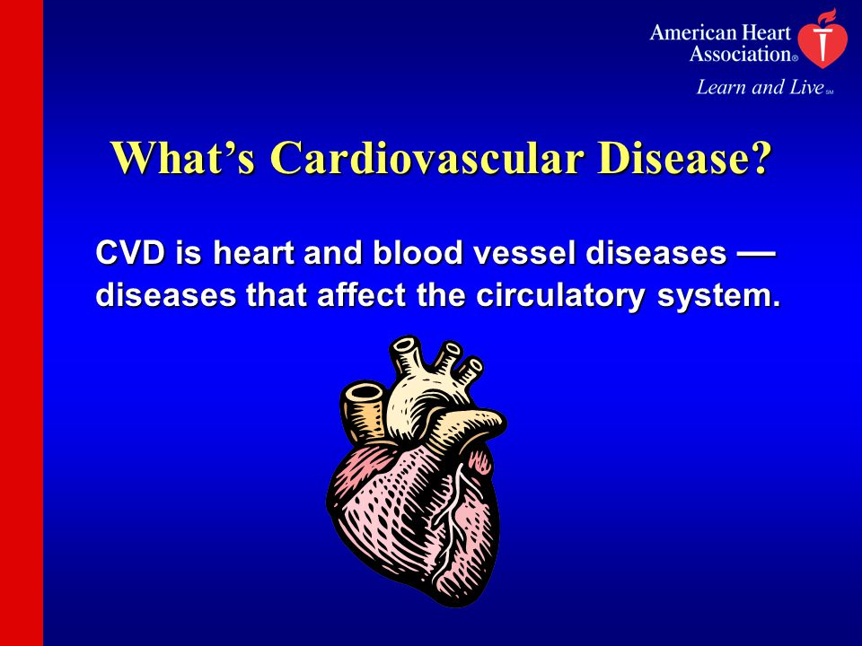 What's Cardiovascular Disease? CVD is heart and blood vessel diseases — diseases that affect the circulatory system.