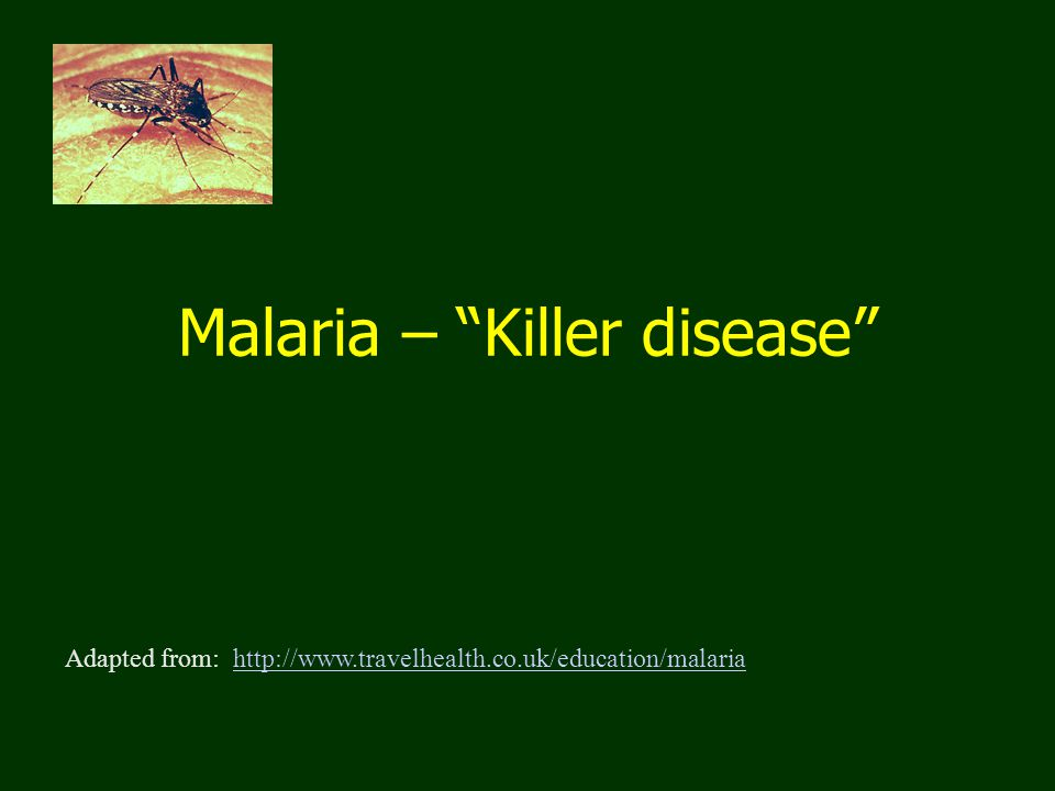 Malaria – Killer disease Adapted from: http://www.travelhealth.co.uk/education/malariahttp://www.travelhealth.co.uk/education/malaria