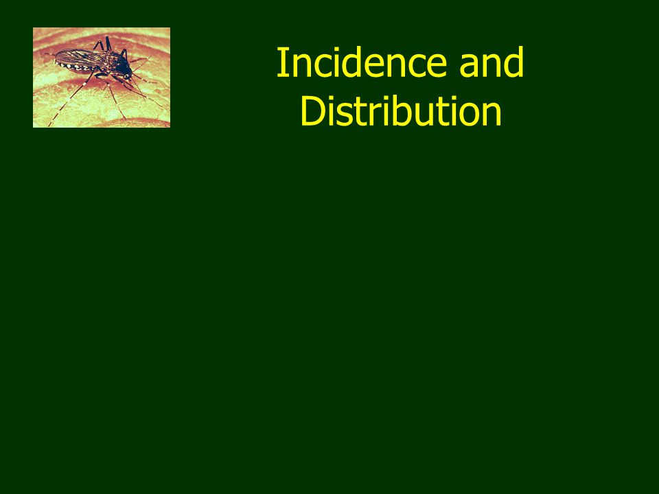 Incidence and Distribution