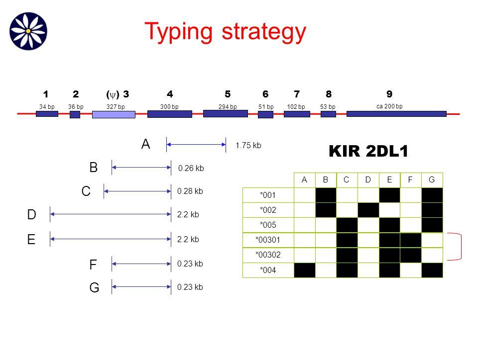 1.75 kb 0.26 kb 0.28 kb 2.2 kb 0.23 kb A B C D E F G Typing strategy 36 bp327 bp300 bp294 bp51 bp 102 bp 53 bp ca 200 bp 34 bp 12 (  ) 3 456789 ABCDEGF *001 *002 *005 *00301 *00302 *004 ABCDEGF ABCDEGF ABCDEGF ABCDEGF ABCDEGF ABCDEGF KIR 2DL1
