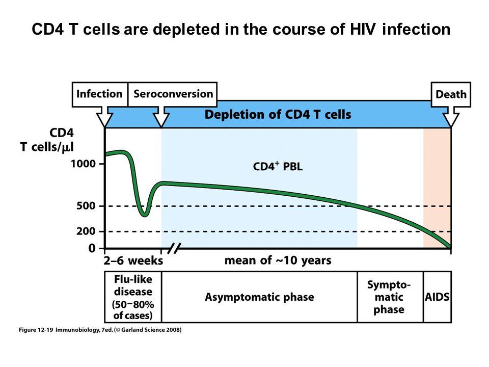 Why are CD4 T cells depleted during the course of HIV infection.