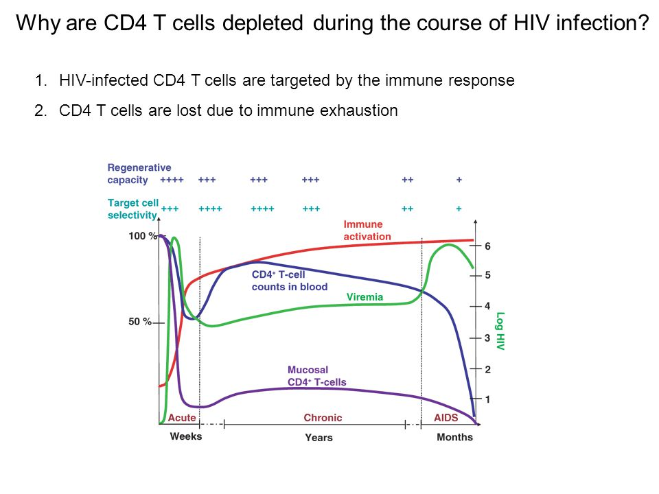 Innate responses against HIV Rapid and first line of defense against the virus Alert and activate the adaptive immune response Release pro-inflammatory signals Clearance of infected cells Internalize and process the virus to present to T cells to initiate the adaptive response HIV counter-attack The virus can infect members of the innate immune system Innate cells can act as depot and effectively transmit virus Inhibition of function via viral factor release and/or improper immune signals Innate immune system vs HIV
