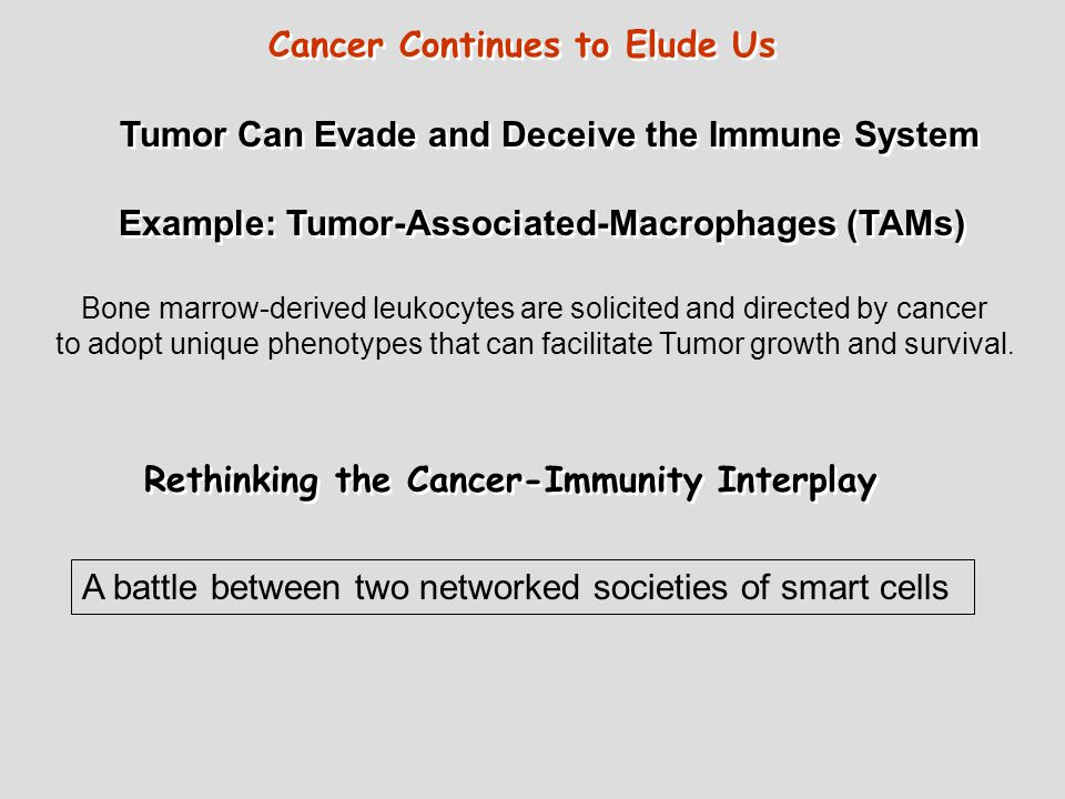 Rethinking the Cancer-Immunity Interplay A battle between two networked societies of smart cells Tumor Can Evade and Deceive the Immune System Example: Tumor-Associated-Macrophages (TAMs) Bone marrow-derived leukocytes are solicited and directed by cancer to adopt unique phenotypes that can facilitate Tumor growth and survival.