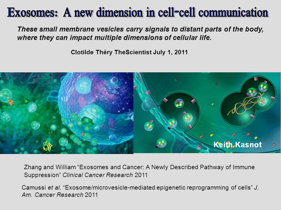 Cancer Dendritic Cells Killer Cells D C K Generic Modeling of the Exosome-based Cancer-Immunity Interplay Generic Modeling of the Exosome-based Cancer-Immunity Interplay The CDK Model With Mingyang Lu, Bin Huang and Jose' Onuchic, CTBP, and Sam Hanash, MD Anderson Exosomes