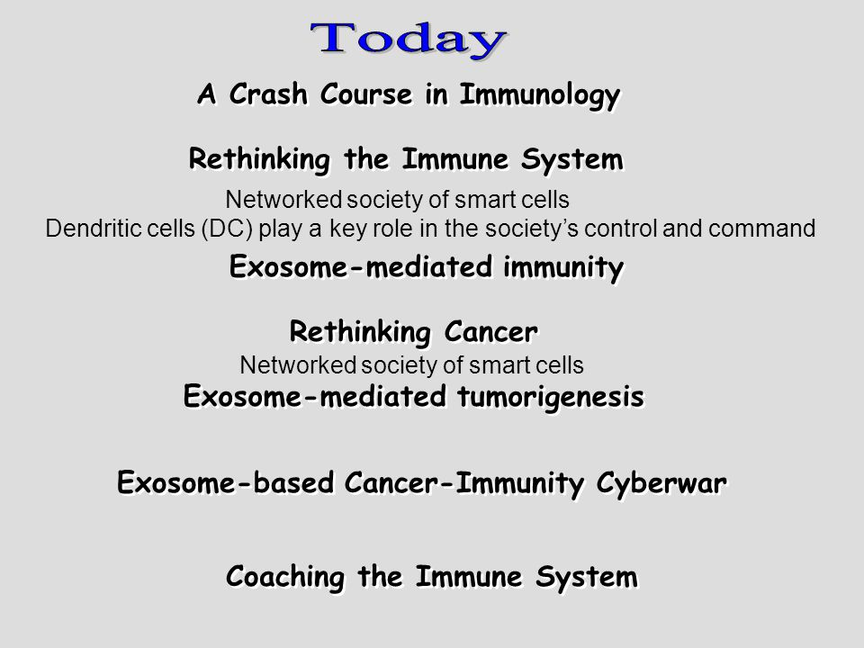 The effect of immune recognition The meaning of steady-state solutions in light of tumorigenesis The Singular Effect of Exosomes The Effect of Time Delay Therapeutic implications Reassuring retrospect agreement The need for two stage therapy The risk of over treatment