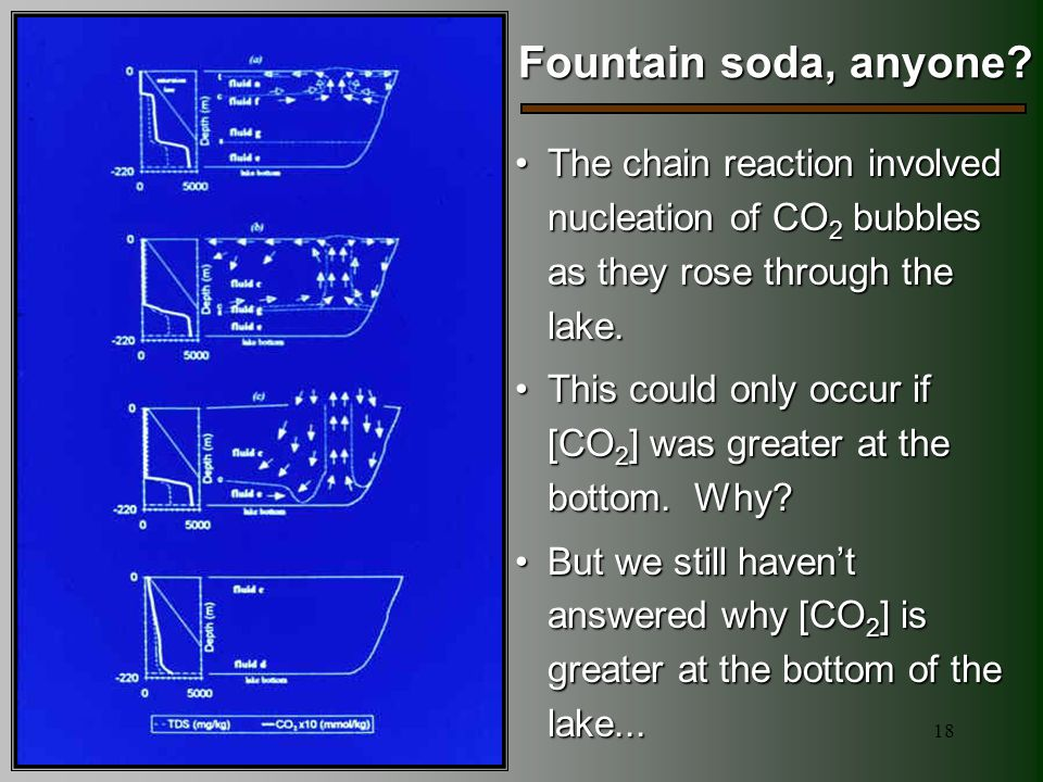 18 Fountain soda, anyone? The chain reaction involved nucleation of CO 2 bubbles as they rose through the lake.The chain reaction involved nucleation