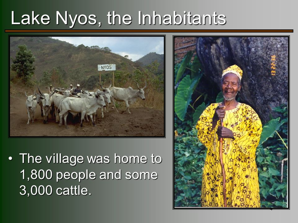 4 Lake Nyos, the Inhabitants The village was home to 1,800 people and some 3,000 cattle.The village was home to 1,800 people and some 3,000 cattle.
