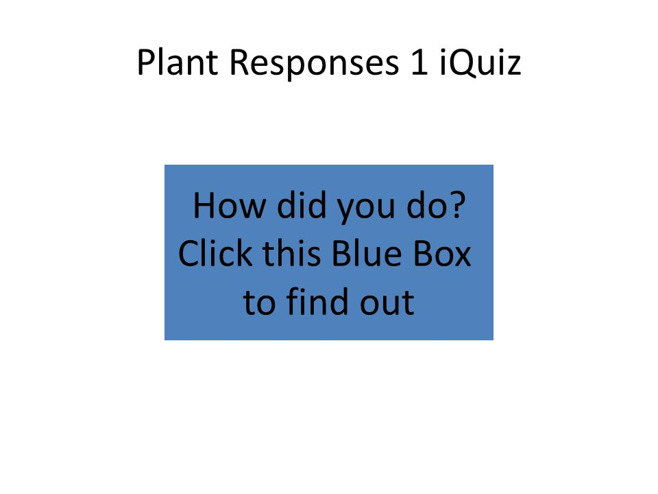 How did you do Click this Blue Box to find out Plant Responses 1 iQuiz