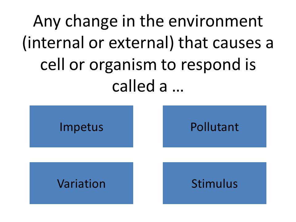 Any change in the environment (internal or external) that causes a cell or organism to respond is called a … ImpetusPollutant VariationStimulus