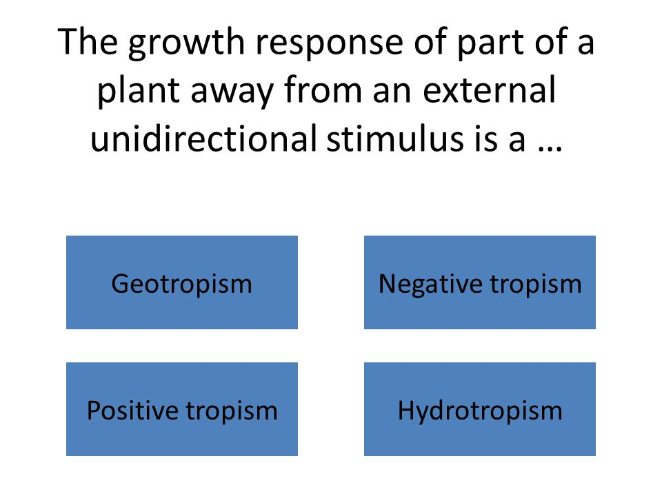 The growth response of part of a plant away from an external unidirectional stimulus is a … Geotropism Positive tropismHydrotropism Negative tropism