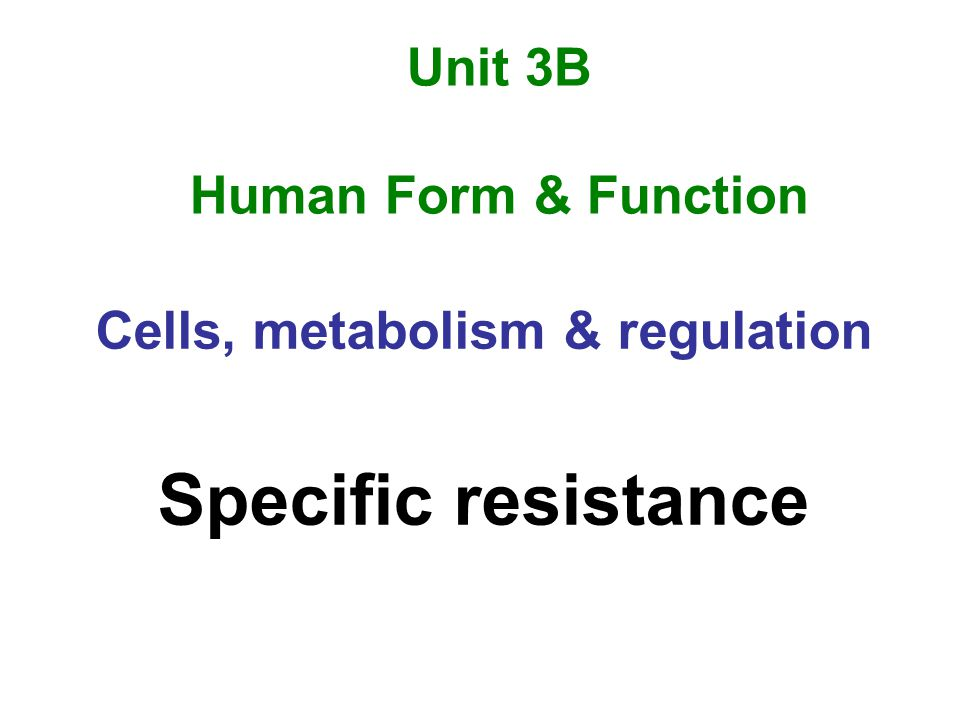 B cellsT cells Humoral immunity Antibody mediated immunity Cellular immunity Cell mediated immunity Chemical-based systemCell-based system Produce antibody (Ig)Produce killer cells Lymphocytes educated in bone marrow Lymphocytes educated in thymus Effective against extracellular bacteria ( some viruses) Effective against intracellular viruses & cancer cells (some bacteria)
