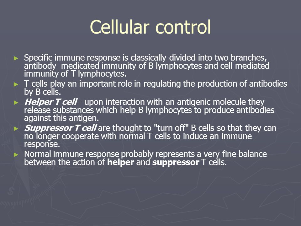 Cellular control ► ► Specific immune response is classically divided into two branches, antibody medicated immunity of B lymphocytes and cell mediated immunity of T lymphocytes.