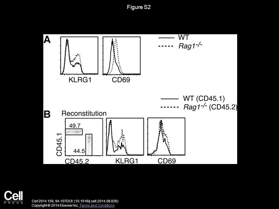 Figure S2 Cell 2014 159, 94-107DOI: (10.1016/j.cell.2014.08.026) Copyright © 2014 Elsevier Inc.