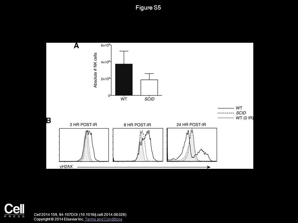 Figure S5 Cell 2014 159, 94-107DOI: (10.1016/j.cell.2014.08.026) Copyright © 2014 Elsevier Inc.